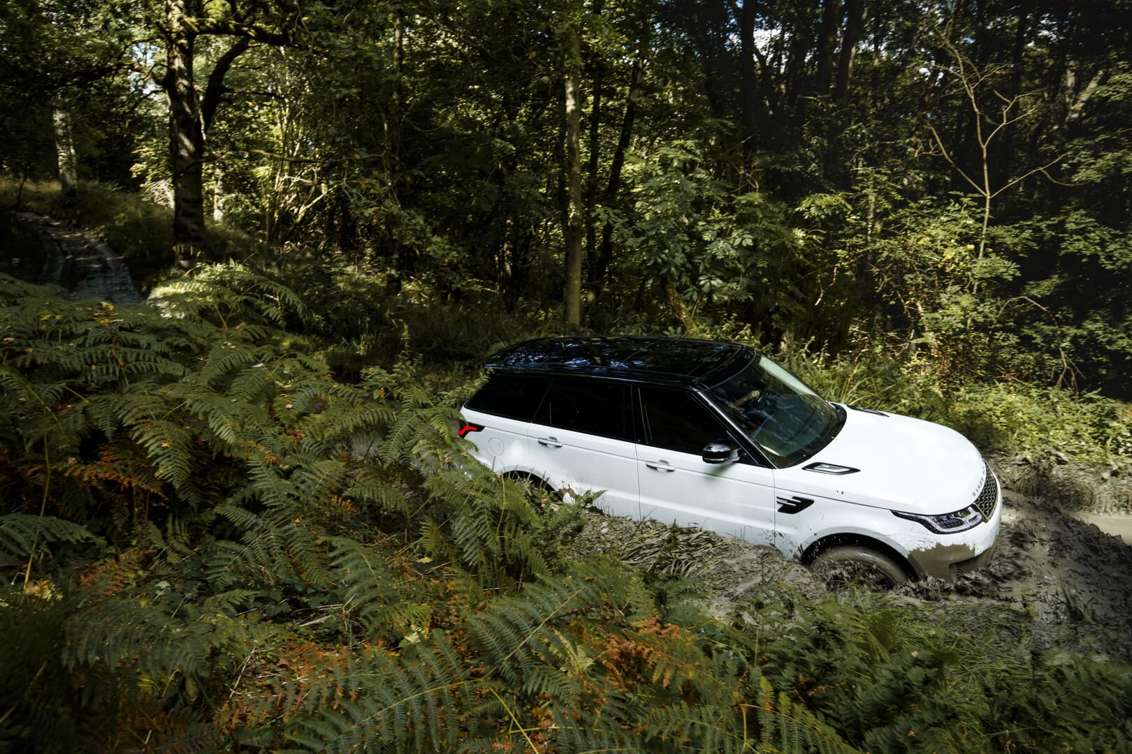 Фотография экоавто Range Rover Sport plug-in hybrid P400e - фото 6