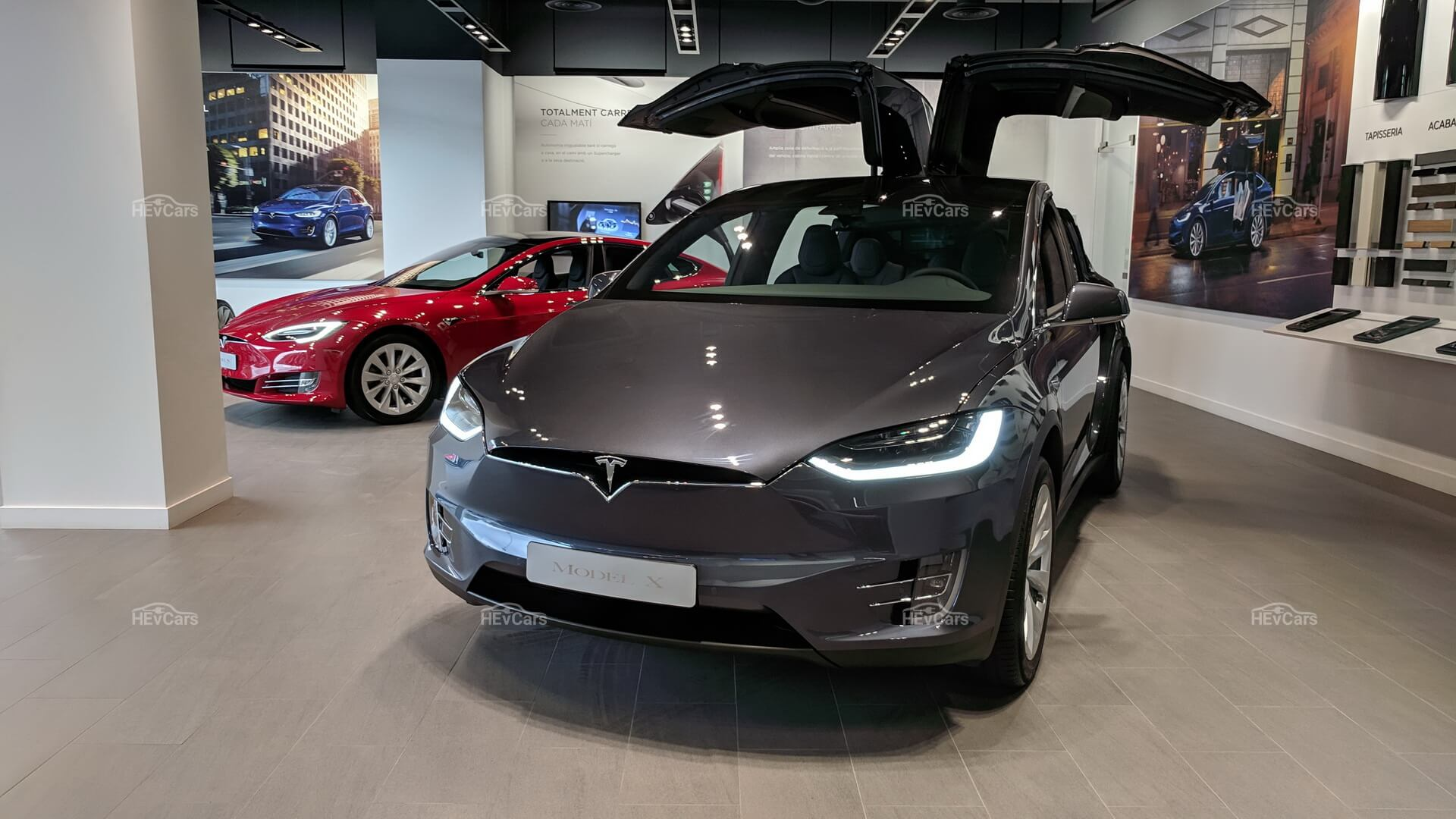 Tesla Model SиModel X