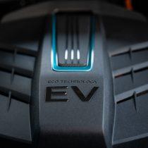 Фотография экоавто Kia Niro EV - фото 59